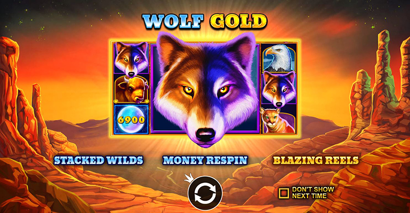 wolf gold blazing reels
